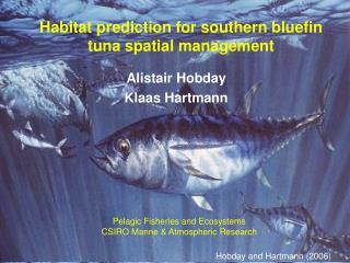 Habitat prediction for southern bluefin tuna spatial management