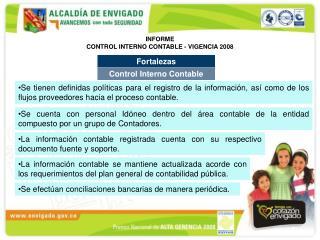 INFORME CONTROL INTERNO CONTABLE - VIGENCIA 2008