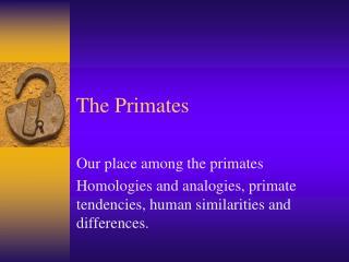 The Primates