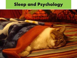 Sleep and Psychology