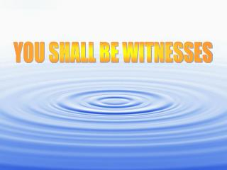 YOU SHALL BE WITNESSES