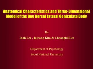 Anatomical Characteristics and Three-Dimensional Model of the Dog Dorsal Lateral Geniculate Body