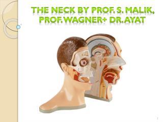 The Neck by Prof. S. Malik, ProF. Wagner + Dr.  Ayat