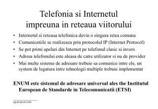 Telefonia si Internetul impreuna in reteaua viitorului