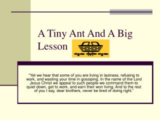 A Tiny Ant And A Big Lesson