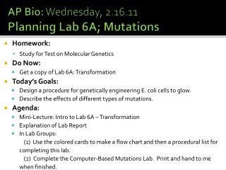 AP Bio:  Wednesday, 2.16.11 Planning Lab 6A; Mutations