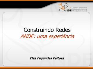 Construindo Redes ANDE: uma experiência