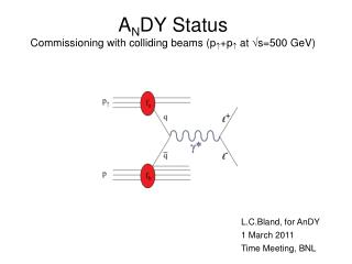 A N DY Status Commissioning with colliding beams (p  +p   at  s=500 GeV)
