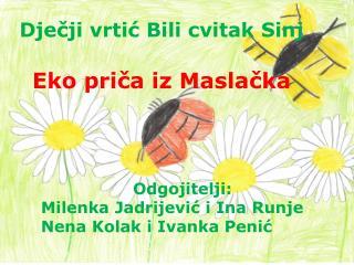 Dječji vrtić Bili cvitak Sinj Eko priča iz Maslačka