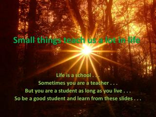 Small things teach us a lot in life