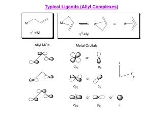 Typical Ligands (Allyl Complexes)