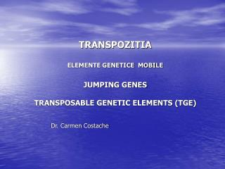 TRANSPOZITIA ELEMENTE GENETICE  MOBILE JUMPING GENES TRANSPOSABLE GENETIC ELEMENTS (TGE)