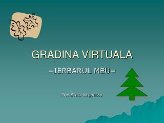 GRADINA VIRTUALA