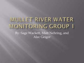 Mullet River Water Monitoring Group 1