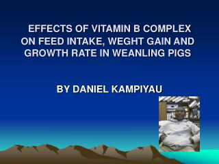 EFFECTS OF VITAMIN B COMPLEX ON FEED INTAKE, WEGHT GAIN AND GROWTH RATE IN WEANLING PIGS
