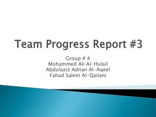 Team Progress Report #3