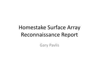 Homestake  Surface Array Reconnaissance Report