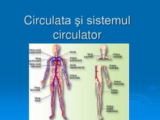 Circula ta şi sistemul circulator