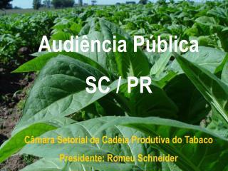 Câmara Setorial da Cadeia Produtiva do Tabaco  Presidente: Romeu Schneider