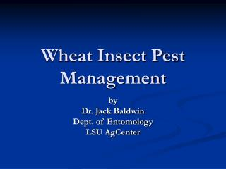 Wheat Insect Pest Management