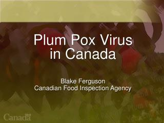 Plum Pox Virus  in Canada Blake Ferguson Canadian Food Inspection Agency