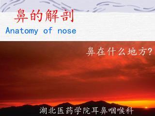 湖北医药学院耳鼻咽喉科