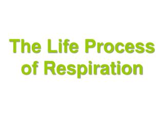 The Life Process of Respiration