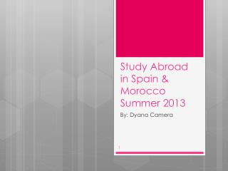 Study Abroad in Spain & Morocco Summer 2013