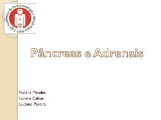 Pâncreas e Adrenais
