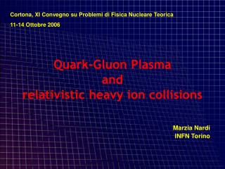 Quark-Gluon Plasma  and  relativistic heavy ion collisions