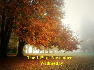 The  14 th   of November            Wednesday