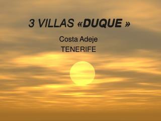 3 VILLAS  « DUQUE  »