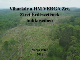 Viharkár a HM VERGA  Zrt . Zirci Erdészetének bükköseiben