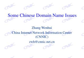 Some Chinese Domain Name Issues