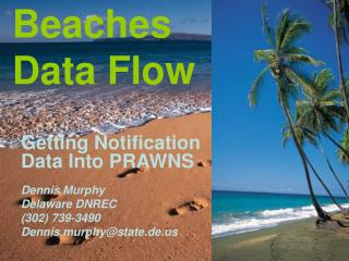 Beaches Data Flow