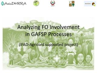 Analyzing  FO Involvement in GAFSP Processes