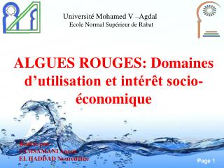 ALGUES ROUGES: Domaines d'utilisation et intérêt socio-économique