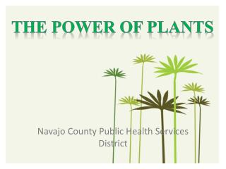 Navajo County Public Health Services District