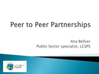 Peer to Peer Partnerships