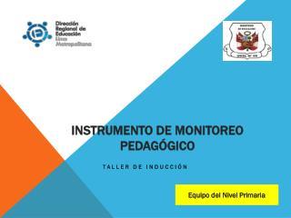 INSTRUMENTO DE MONITOREO PEDAGÓGICO