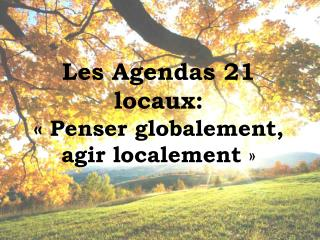 Les  Agendas  21 locaux: «Penser globalement, agir localement »