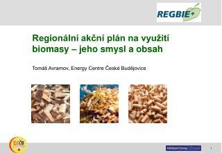 Regionální akční plán na využití biomasy – jeho smysl a obsah