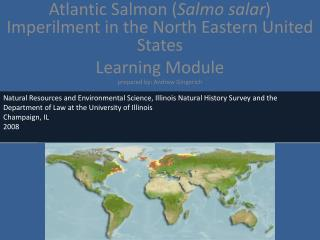 Atlantic Salmon ( Salmo salar)  imperilment in North Eastern United States
