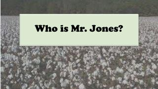 Who is Mr. Jones?