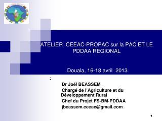 ATELIER   CEEAC-PROPAC sur la PAC ET LE PDDAA REGIONAL  Douala , 16-18  avril  2013