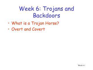 Week 6: Trojans and Backdoors
