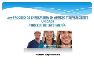 230-Proceso de Enfermería en Adulto y Envejeciente Unidad I Proceso  de Enfermería