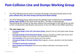 Post-Collision Line and Dumps Working Group