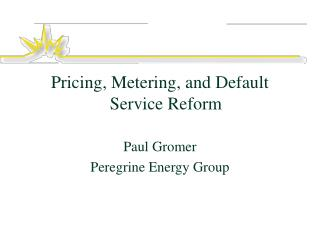 Pricing, Metering, and Default Service Reform Paul Gromer Peregrine Energy Group
