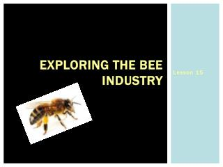 Exploring the Bee Industry